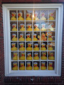 Ducks window capecod